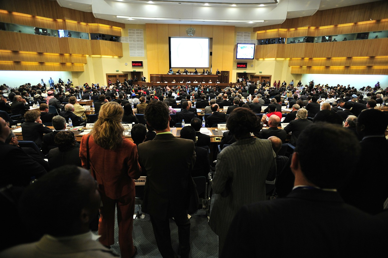 konferencja branzowa